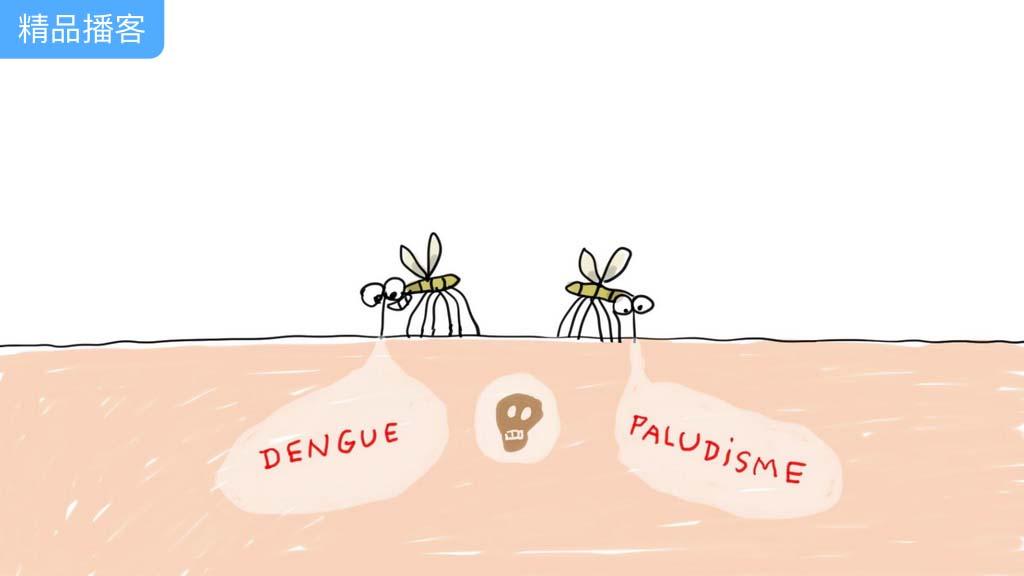 人们可以彻底摆脱蚊子的困扰吗?