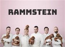 Rammstein 歌曲精选