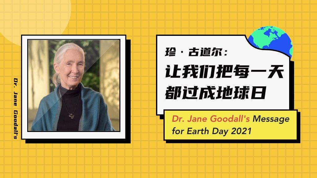 珍·古道尔:让我们把每一天都过成地球日