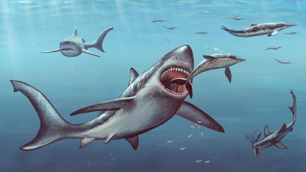 """【法语动物世界】原来海洋中存在过如此可怕的""""海怪""""…"""