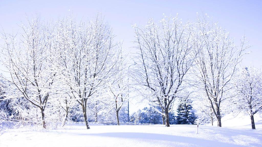 冬天就要来啦,用法语科普一下关于冬天的四个小知识~