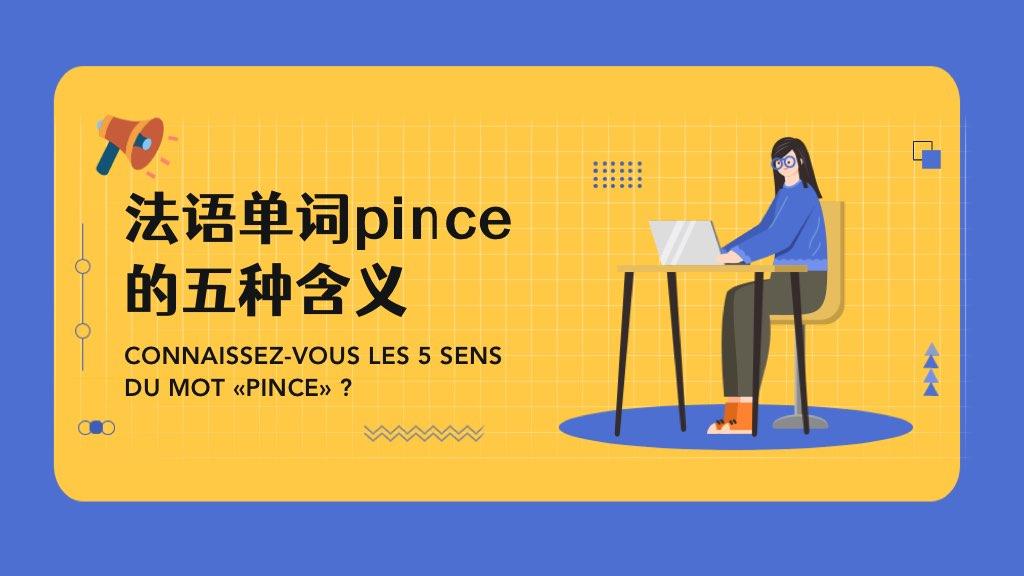 法语单词pince的五种含义