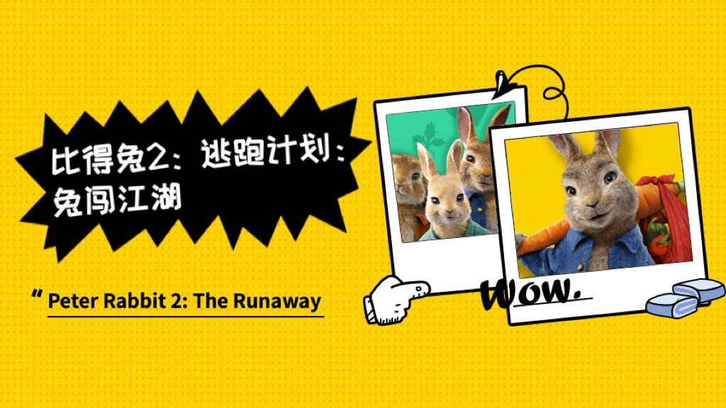《比得兔2:逃跑计划》:兔闯江湖,开启城市冒险之旅