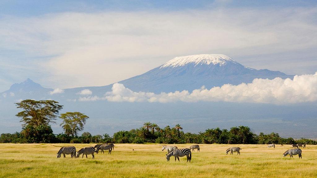 太阳系最大的火山——奥林帕斯山到底有多大?🌋