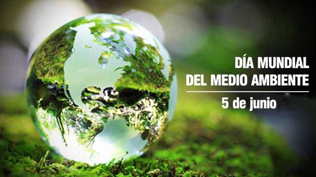 世界环境日:从小事做起,保护地球家园