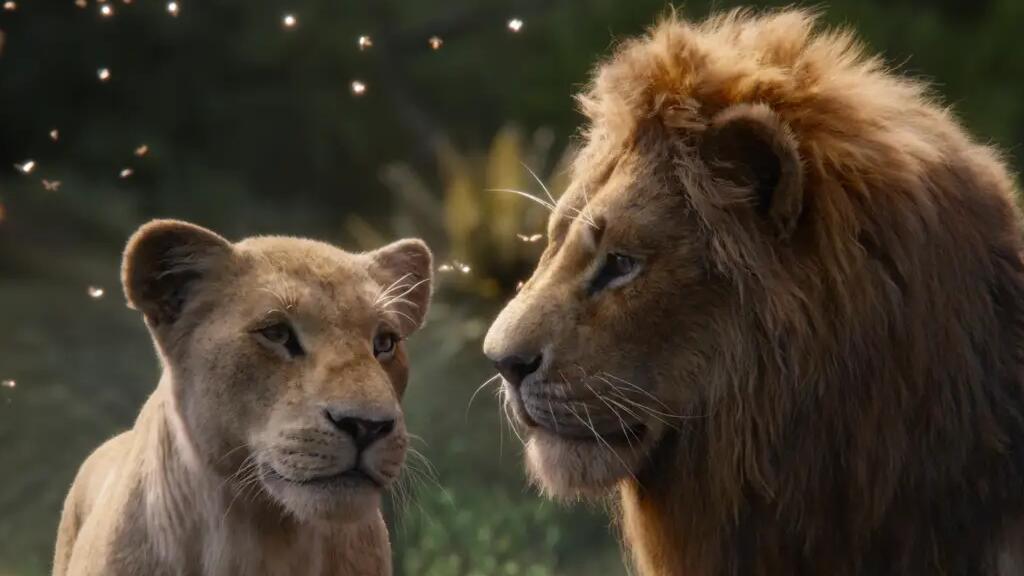 新版《獅子王》法語片段:我居然被兩只獅子的愛情感動了…