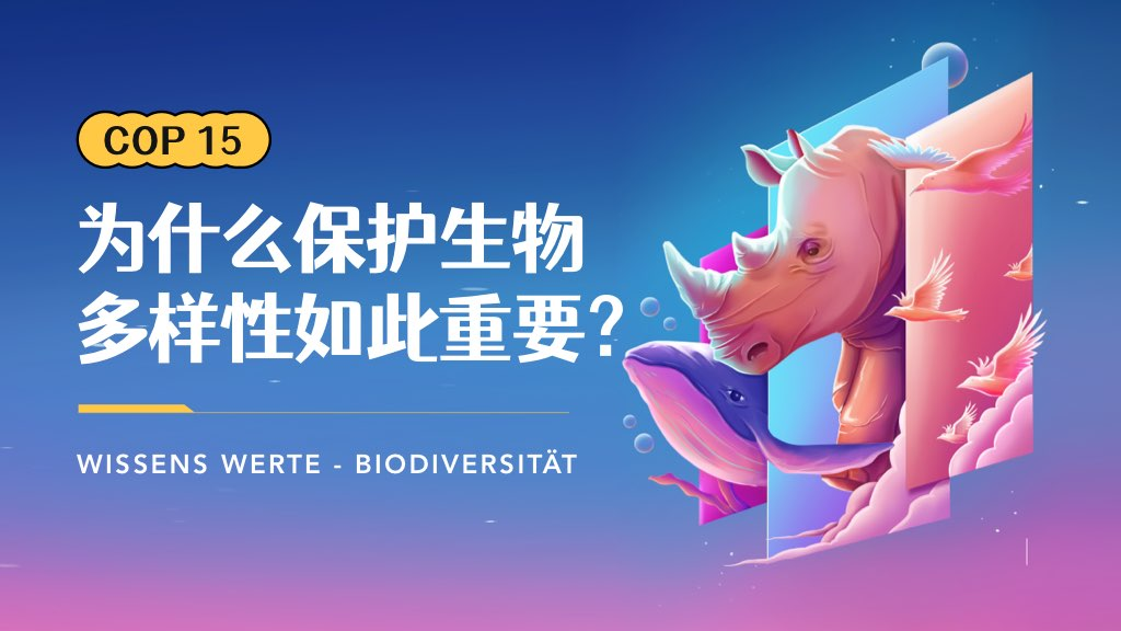 COP 15 | 为什么保护生物多样性如此重要?